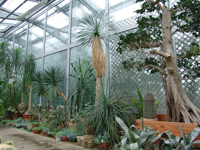 Каунасский ботанический сад