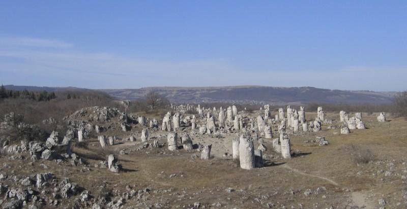 Каменный лес и необычные каменные скульптуры