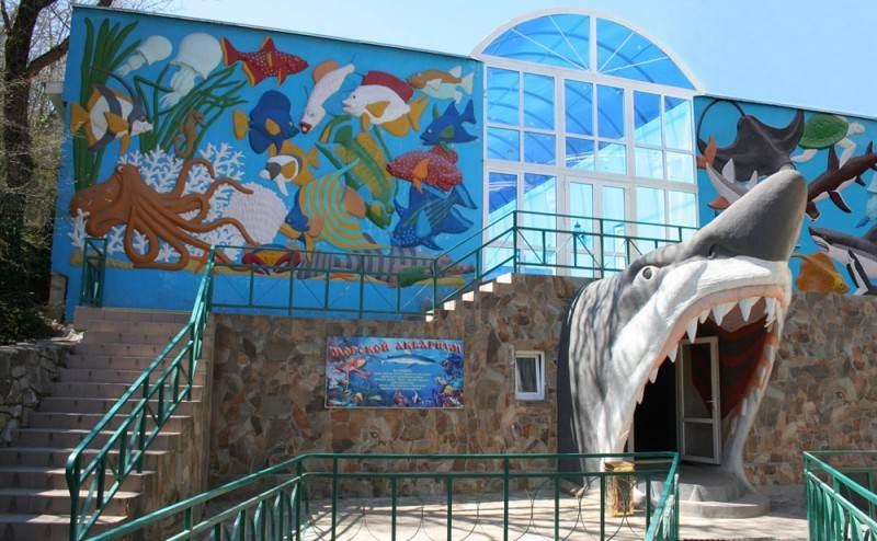 Вход в аквариум