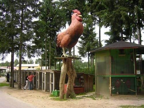 На территории парка есть и мини зоопарк