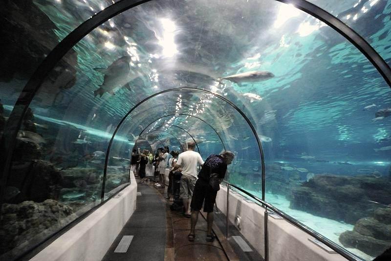 Самый длинный тоннель