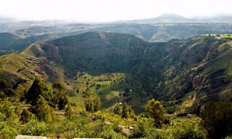 Растительность в кратере