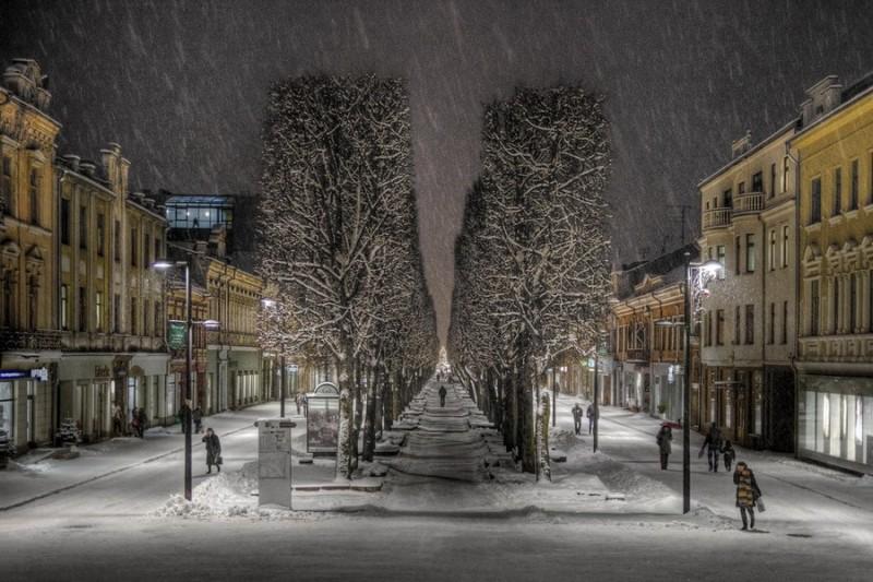Аллея Свободы в зимнее время года