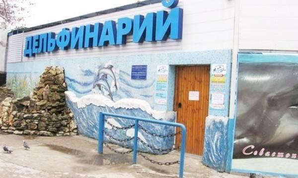 Дельфинарий в Севастополе в Артбухте