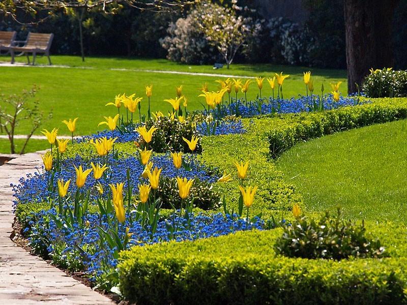 Цветочная река в ботаническом саду