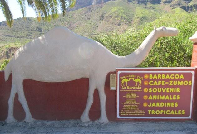 Указатели в верблюжьем парке