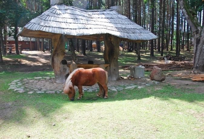 Мини зоопарк