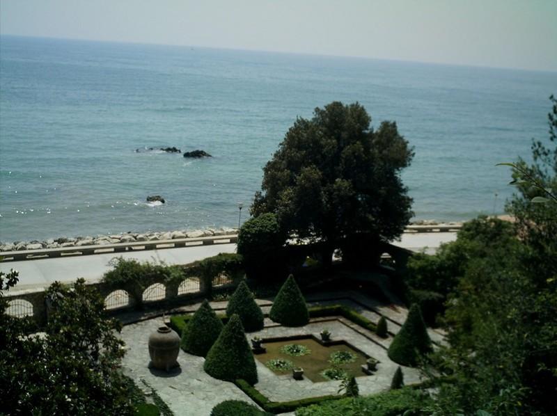 Вид на ботанический сад с высоты