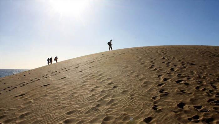 Прогуливаясь по дюнам