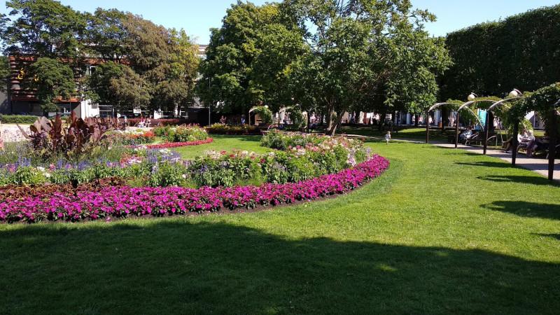 Декоративный парк в центре города