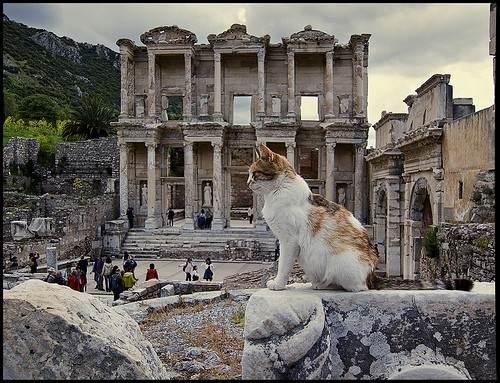 Древний город Книдос