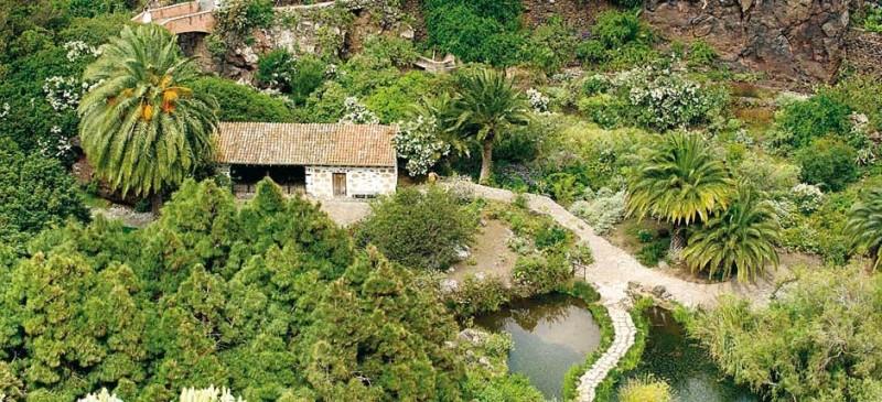 Ботанический сад Виера-и-Клавихо