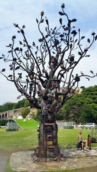 Чудо дерево у станции канатной дороги