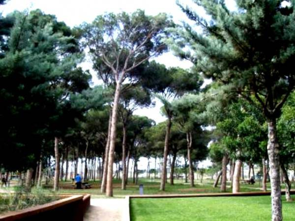 Парк Пинарет