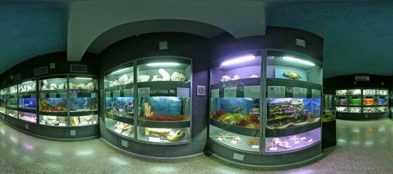 Залы с аквариумами