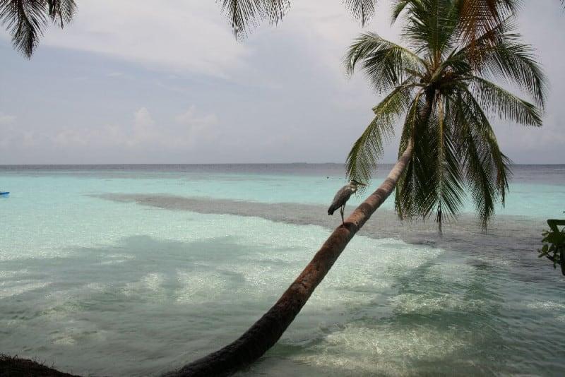 Облачный день сентября на Мальдивах
