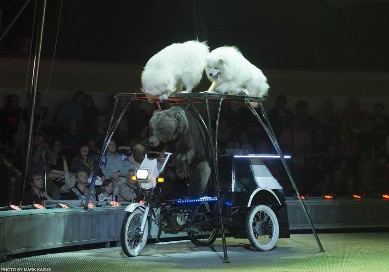 Рижский цирк
