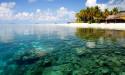 Спокойные воды океана