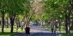 В тени листвы приморского парка в Бургасе
