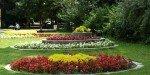 В парке Борисова Градина