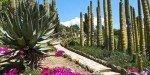 Ботанический сад Пинья де Роса