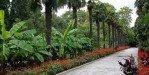 Тропинками ботанического сада