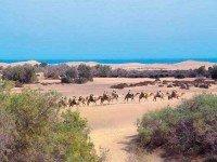 Обзорная экскурсия по о. Гран Канария