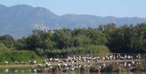 Природный парк