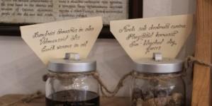 Экспонаты ратушной аптеки