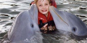 Севастопольский дельфинарий в Казачьей бухте