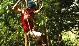 Прогулка по верхушкам деревьев (TreeTop Adventure)