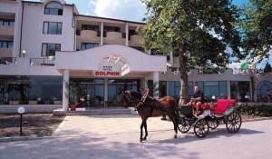 Dolphin 4*