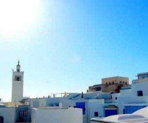 Экскурсия в Карфаген с посещением Сиди Бу Саида и  музея Бардо