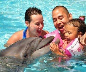 Дельфинарий в Шарм Эль Шейхе