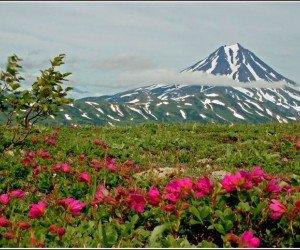Долина роз – Шипкинский перевал
