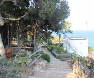 смотровая площадка в ботаническом саду Маримутра