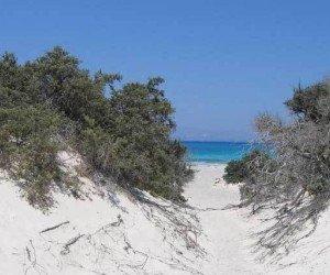 Круиз на остров Хриси