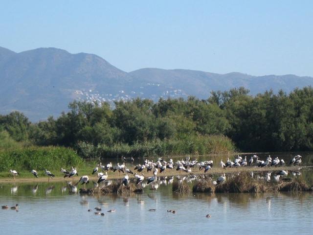Природный парк Эмпорда