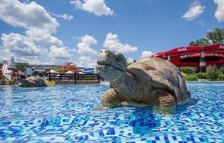 """Аквапарк """"Action Aquapark"""""""