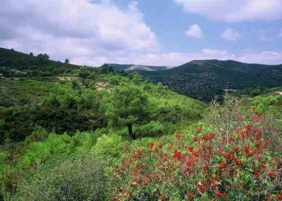 Природный парк Сьерра-де-Ирта