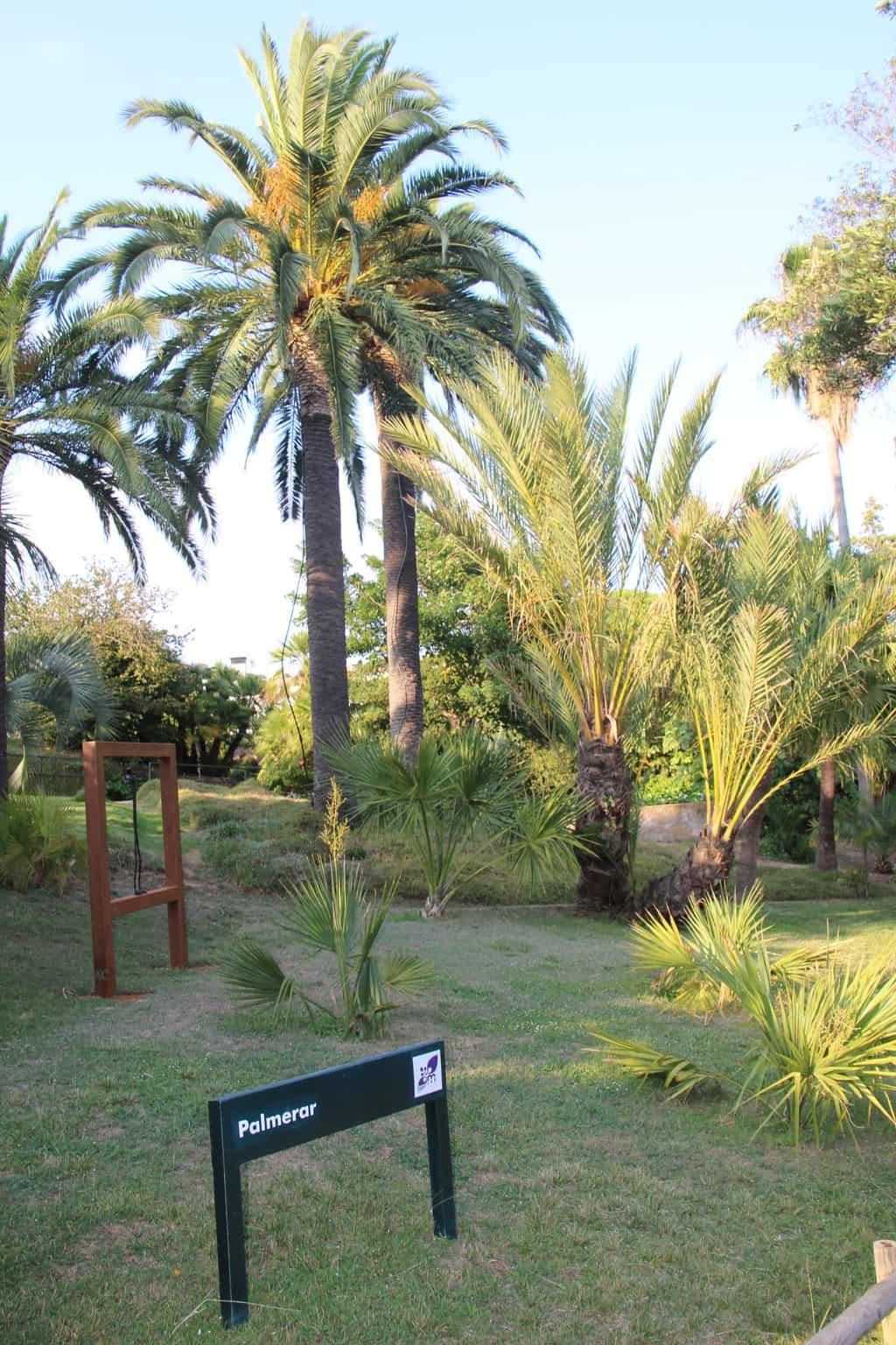 Ухоженная территория сада