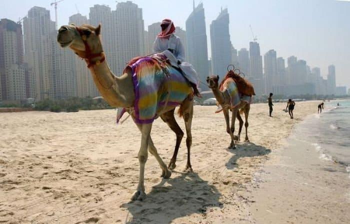 Жаркие дни в Дубаи