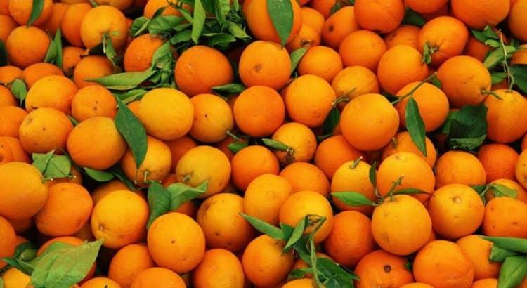 Сезоны фруктов в Турции