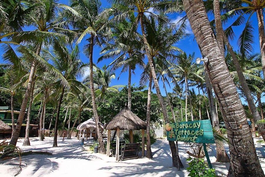 Отдых в тени пальм