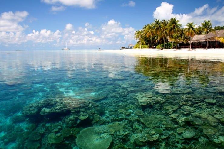 Теплая вода океана