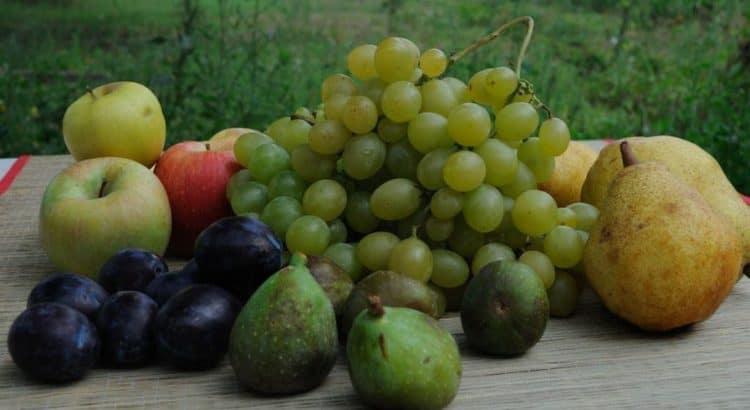 Сезоны фруктов в Болгарии