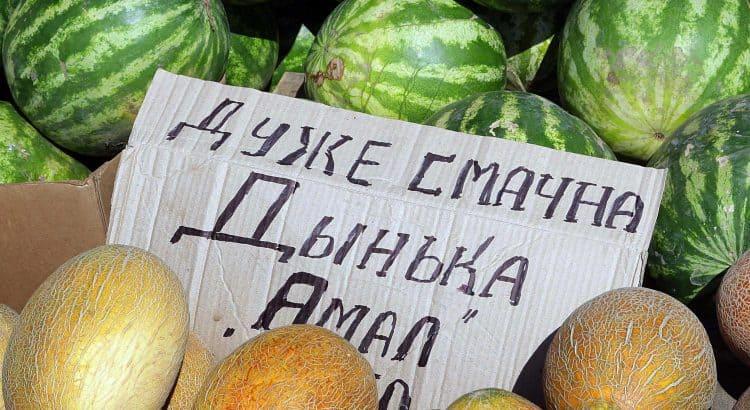 Крымские фрукты: дыни и арбузы