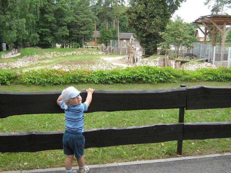 Дети в рижском зоопарке