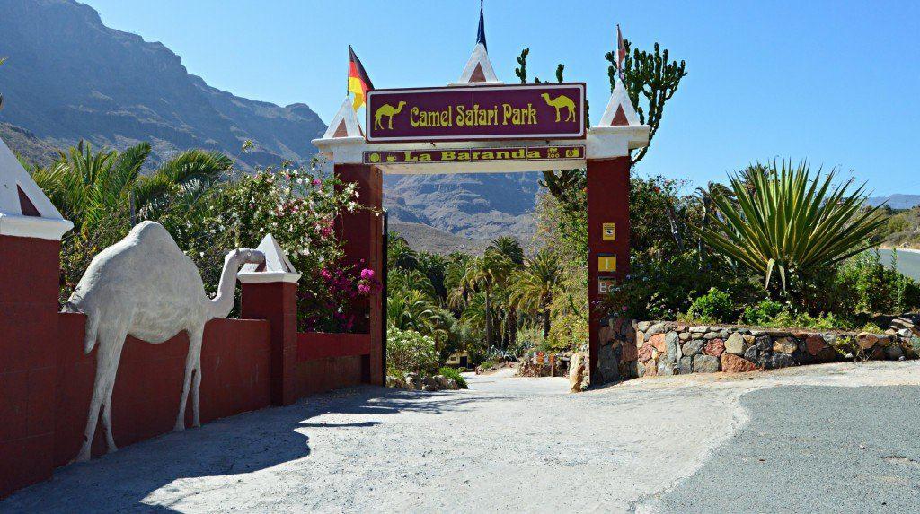 Вход в верблюжий сафари парк