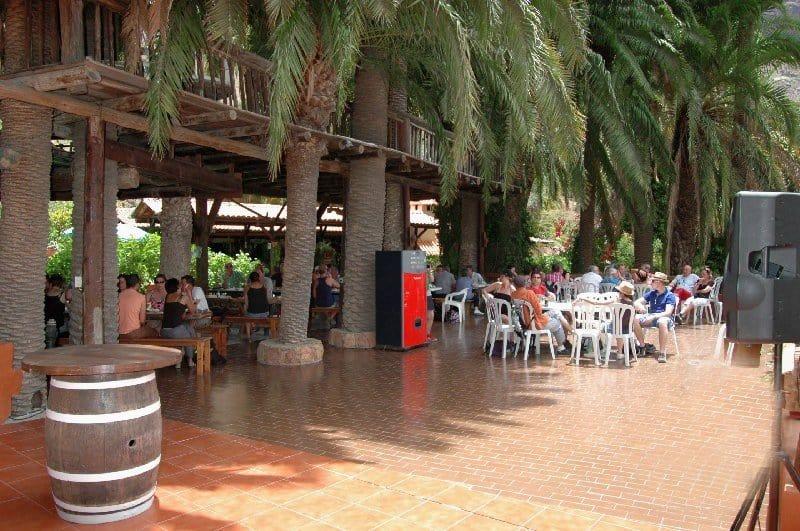 Кафе в сафари парке
